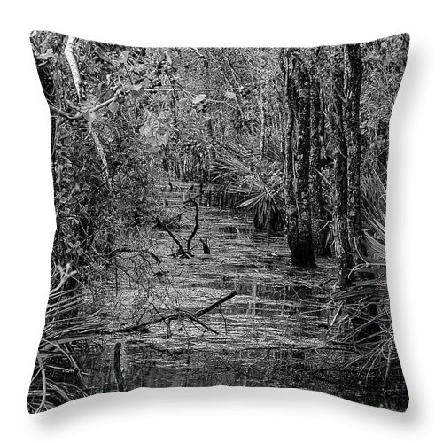 Canal Throw Pillow featuring the photograph The Canal by Jerry Connally
