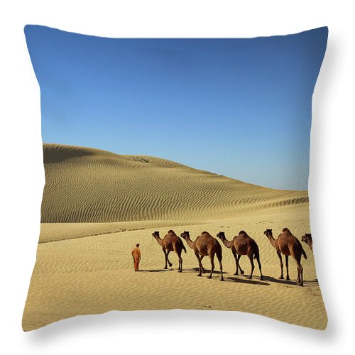 The Convoy Of Camel In Desert Throw Pillow For Sale By Sm Rafiq Photography