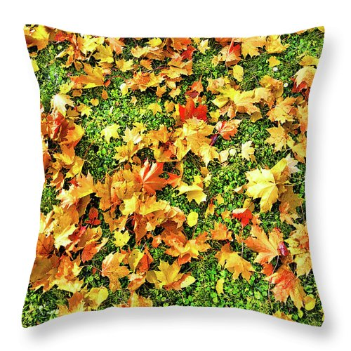 The Golden Grove Throw Pillow featuring the digital art The Golden Grove. by Andy Za