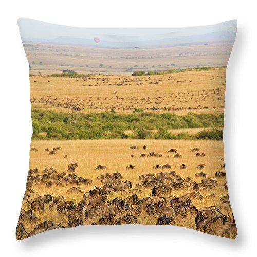 Scenics Throw Pillow featuring the photograph The Masai Mara by Wldavies