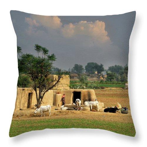 Grass Throw Pillow featuring the photograph The Village Of Punjab by Nadeem Khawar