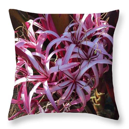 Throw Pillow featuring the photograph Tragedy by Gewanda Parker