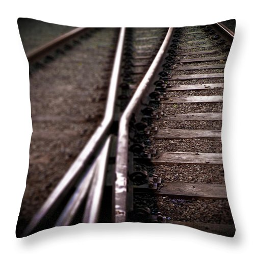 Freight Transportation Throw Pillow featuring the photograph Train Line Crossing by Mikulas1