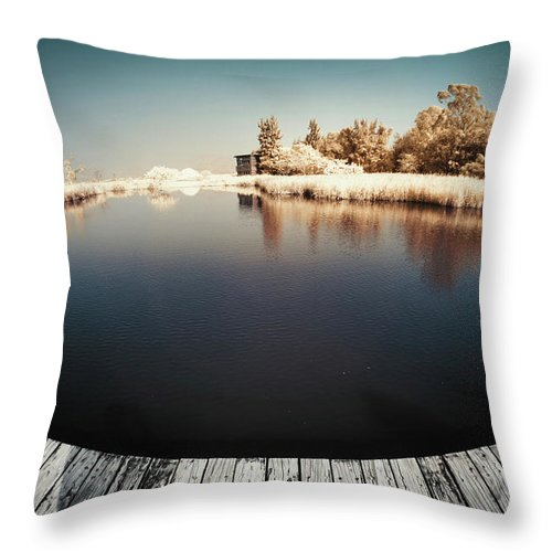 Tranquility Throw Pillow featuring the photograph Trees And Plants In A Pond by D3sign