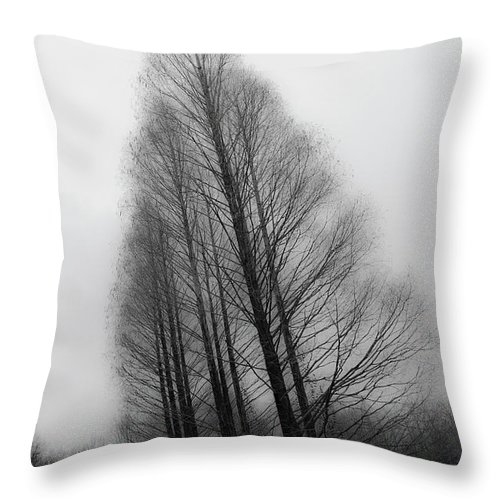 Tranquility Throw Pillow featuring the photograph Trees In Winter Without Leaves by Marie Hickman