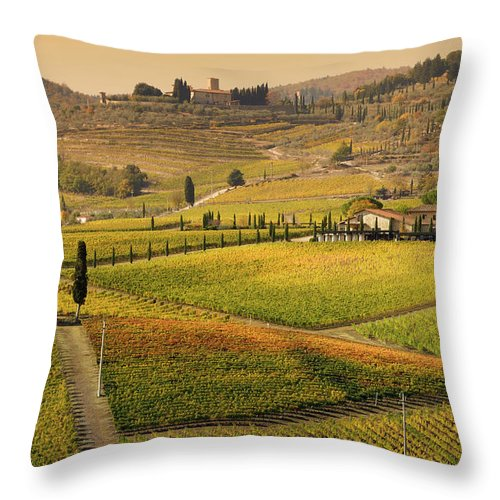 Scenics Throw Pillow featuring the photograph Tuscany Farmhouse And Vineyard In Fall by Lisa-blue