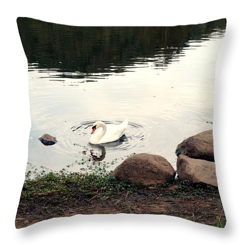 Landscape Throw Pillow featuring the photograph Twilight Swan by Richard Thomas