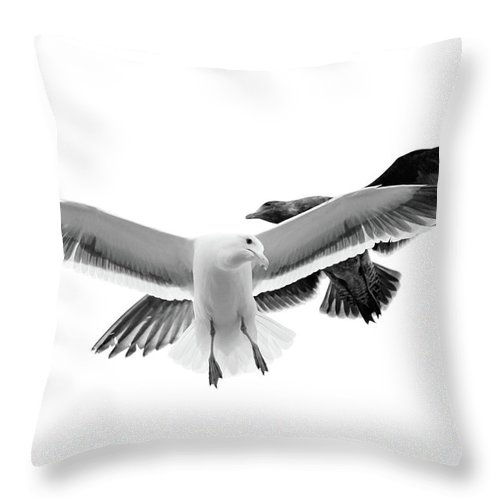 Animal Themes Throw Pillow featuring the photograph Two Seagulls In Flight by Suzanne Dehne