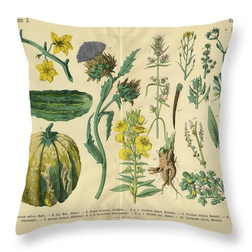 Evening Primrose Throw Pillow featuring the digital art Vegetables And Flowers Of The Garden by Bauhaus1000