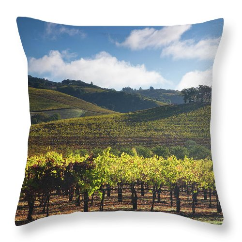 Sonoma County Throw Pillow featuring the photograph Vineyards Autumn Time In Sonoma Valley by Darrell Gulin