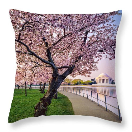 Tidal Basin Throw Pillow featuring the photograph Washington Dc Cherry Trees, Footpath by Dszc