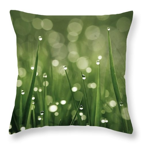 Grass Throw Pillow featuring the photograph Water Drops On Grass by Florence Barreau