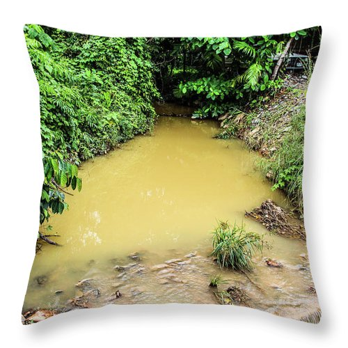 Water Throw Pillow featuring the photograph Water by Emese Kis-Pal