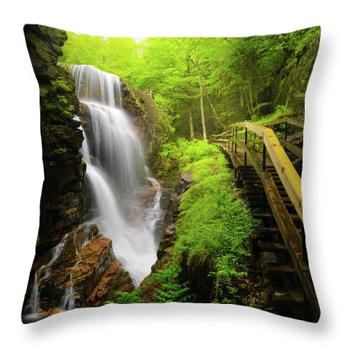 Steps Throw Pillow featuring the photograph Water Falls In The Flume by Noppawat Tom Charoensinphon