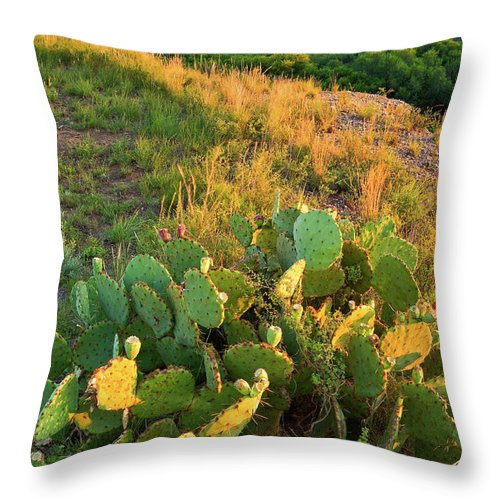 Scenics Throw Pillow featuring the photograph West Texas Canyon Country At Buffalo by Dszc