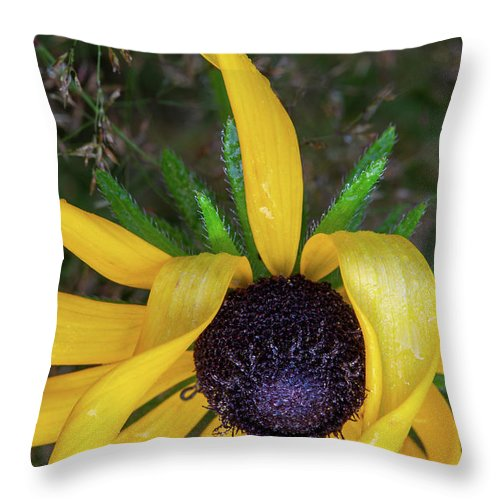When Nature Gives The Finger Throw Pillow featuring the photograph When Nature Gives The Finger by Dale Kincaid