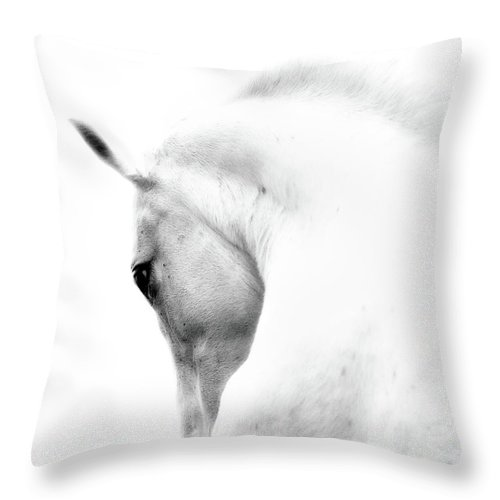 Horse Throw Pillow featuring the photograph White Stallion Andalusian Horse Neck by 66north