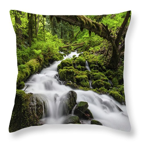Scenics Throw Pillow featuring the photograph Wild Forest Waterfall Idyllic Green by Fotovoyager