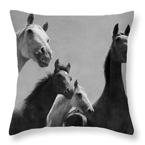 Horse Throw Pillow featuring the photograph Wild Horses Portrait by Antonio Arcos Aka Fotonstudio Photography