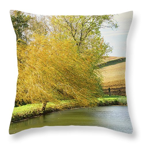 Wind Throw Pillow featuring the photograph Wind In The Willow by Michael Briley
