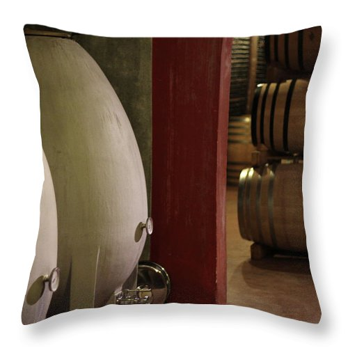 Aging Process Throw Pillow featuring the photograph Wine Cellar by Tom And Steve