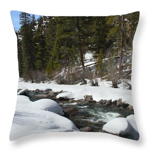 Creek Throw Pillow featuring the photograph Winter Creek by Marie Leslie