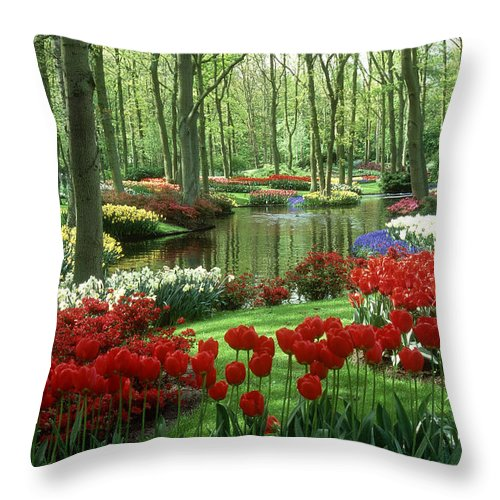 Flowerbed Throw Pillow featuring the photograph Woods And Stream, Keukenhof Gardens by Robin Smith