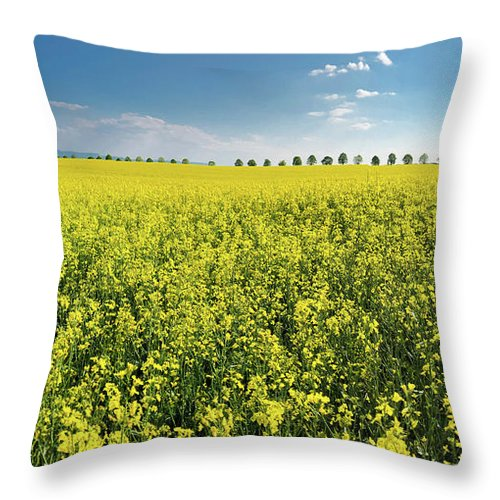 Canola Throw Pillow featuring the photograph Yellow Canola Field and blue Sky Spring Landscape by Matthias Hauser