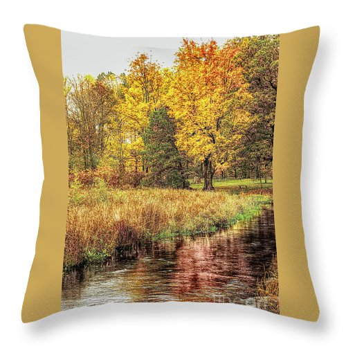 Yellow Forest Throw Pillow featuring the photograph Yellow Forest by Gary Richards
