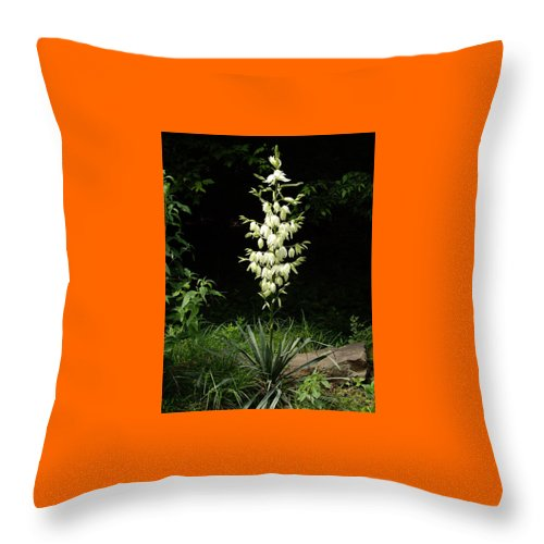 Yucca Throw Pillow featuring the photograph Yucca Blossoms by Nancy Ayanna Wyatt