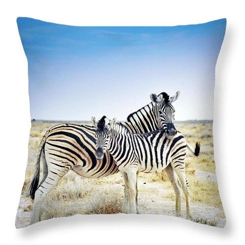 Horse Throw Pillow featuring the photograph Zebra Mother And Her Foal In Etosha by Brytta