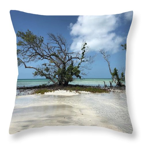 Key West Florida Waters Throw Pillow featuring the photograph Key West Waters by Ashley Turner