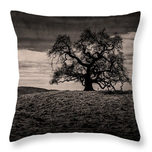 Lone Oak Tree On A Hill Throw Pillow For Sale By Alessandra Rc