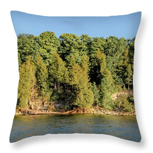 Eagle Throw Pillow featuring the photograph 20-0608-0135 by Anthony Roma