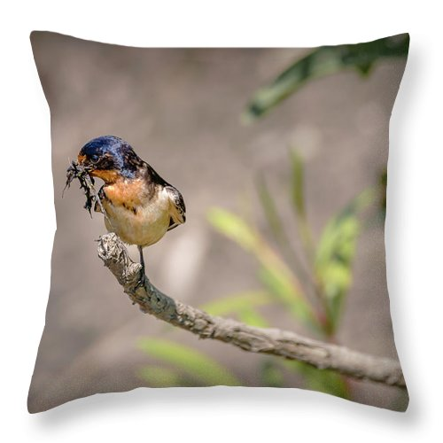 Bird Throw Pillow featuring the photograph 20-0616-0528 by Anthony Roma