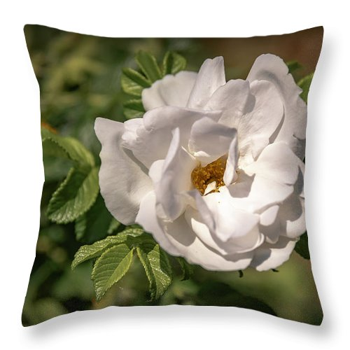 Flowers Throw Pillow featuring the photograph 20-0616-0550 by Anthony Roma