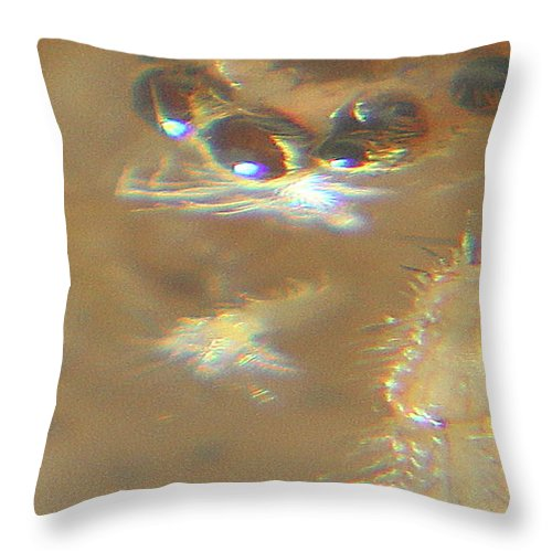 Macro Throw Pillow featuring the photograph Abstract Spider Close Up by Holly Morris