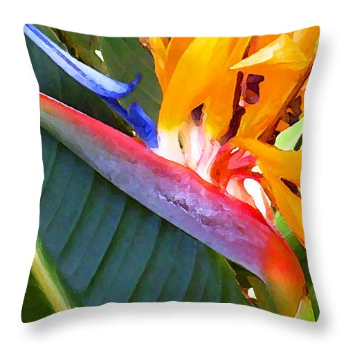 Hawaii Greeting Cards Throw Pillow featuring the photograph Bird of Paradise by James Temple