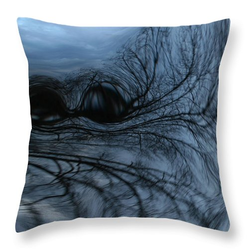 Tree Art Throw Pillow featuring the photograph Black and blue by Linda Sannuti