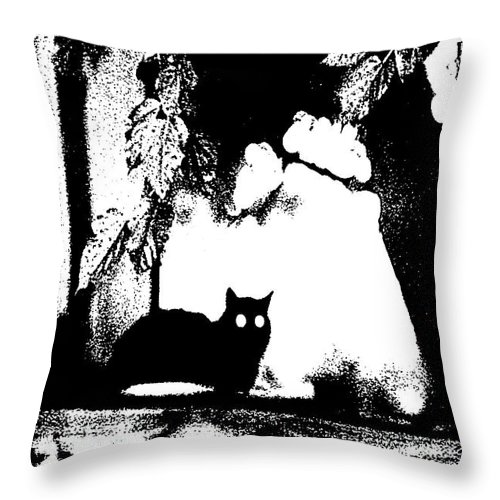 Abstract Throw Pillow featuring the photograph Black Cat by Holly Morris
