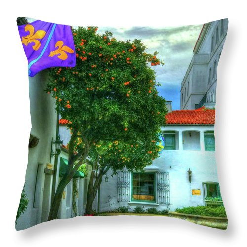 Orange Tree Throw Pillow featuring the photograph Citrus Pops by Debbi Granruth