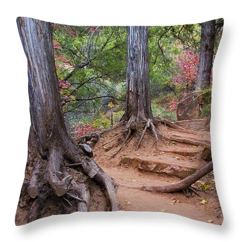 3scape Throw Pillow featuring the photograph Colors of Zion by Adam Romanowicz