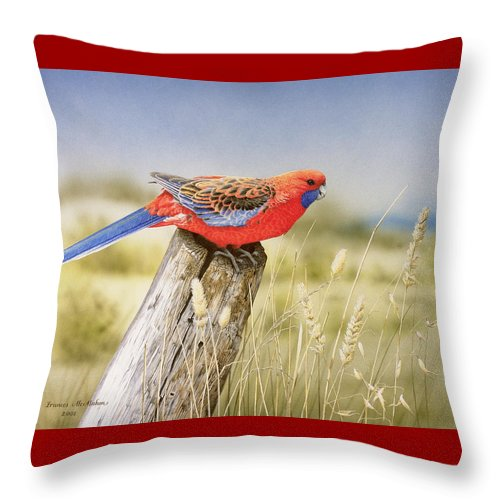 Bird Throw Pillow featuring the painting Colour And Light - Crimson Rosella by Frances McMahon
