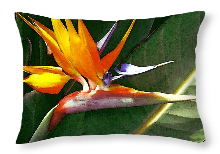 Bird Of Paradise Throw Pillow featuring the photograph Crane Flower by James Temple