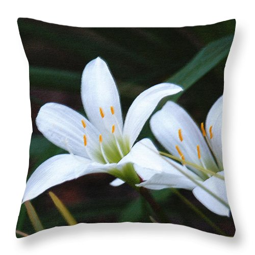 Lily Throw Pillow featuring the photograph Delicate Beauty-Atamasco Lilies by Suzanne Gaff