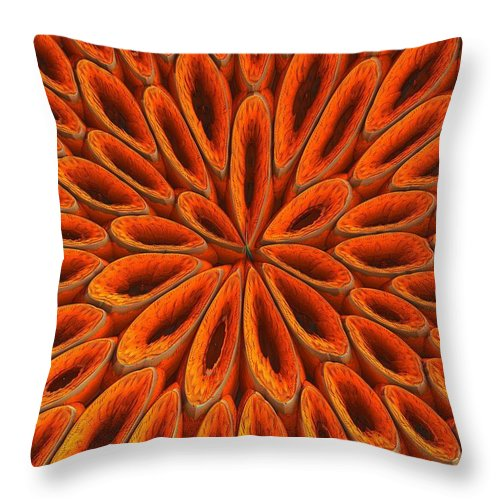Throw Pillow featuring the photograph Face Mask Orange by Getty Images