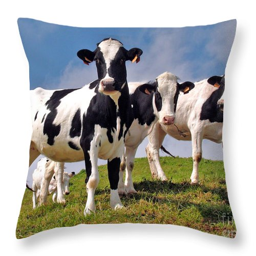 Agriculture Throw Pillow featuring the photograph Family portrait by Gaspar Avila