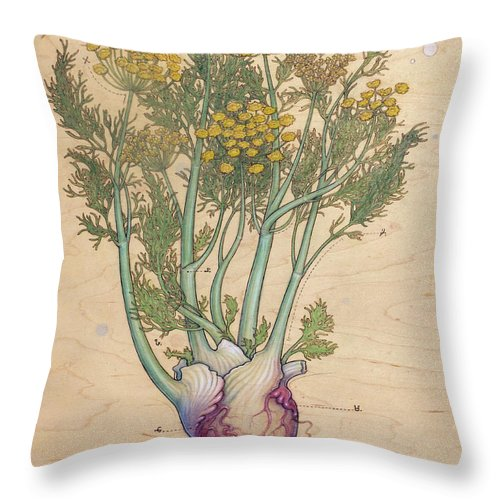 Throw Pillow featuring the pyrography Fennel Heart by Fay Helfer