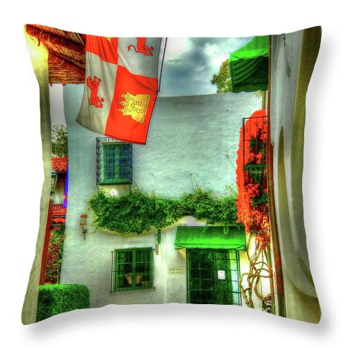 Flag Throw Pillow featuring the photograph Flagged by Debbi Granruth