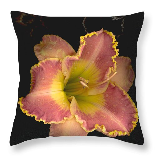 Day Lily Throw Pillow featuring the photograph Fleeting Beauty by Suzanne Gaff